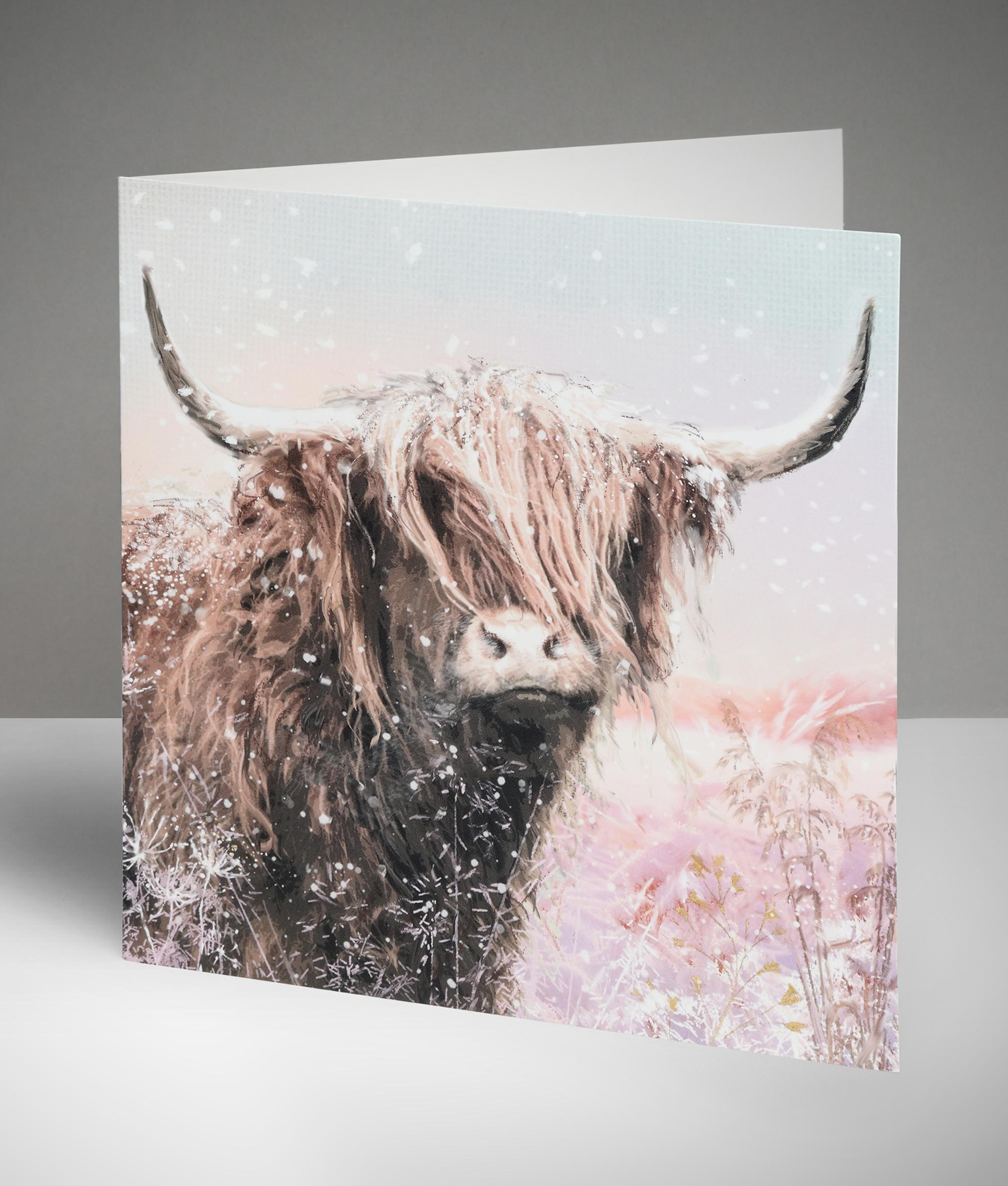 Archie The Highland Cow Christmas Cards Pack Of 10 Cancer