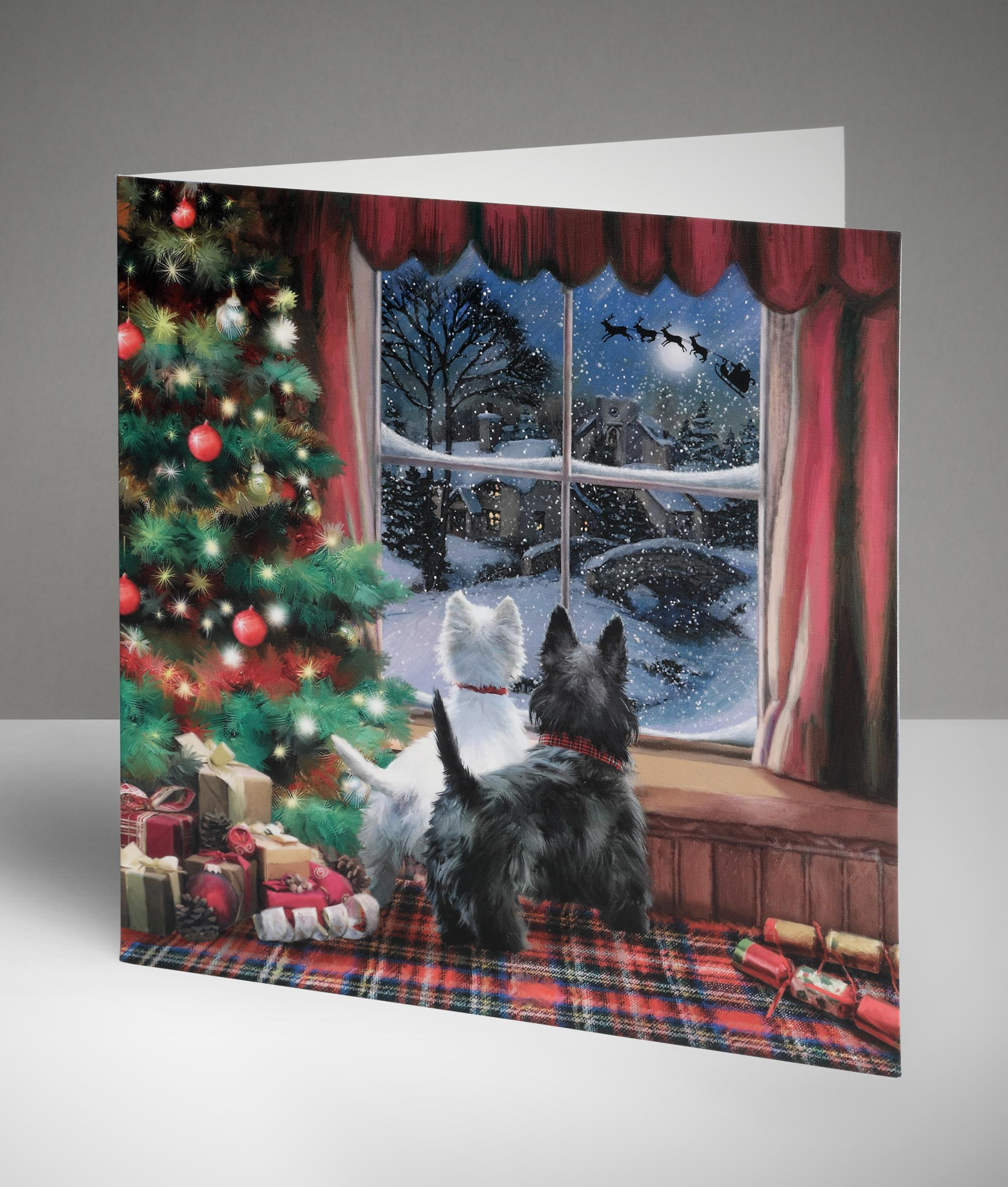 Waiting For Santa Christmas Cards, Pack of 10 | Cancer Research UK ...