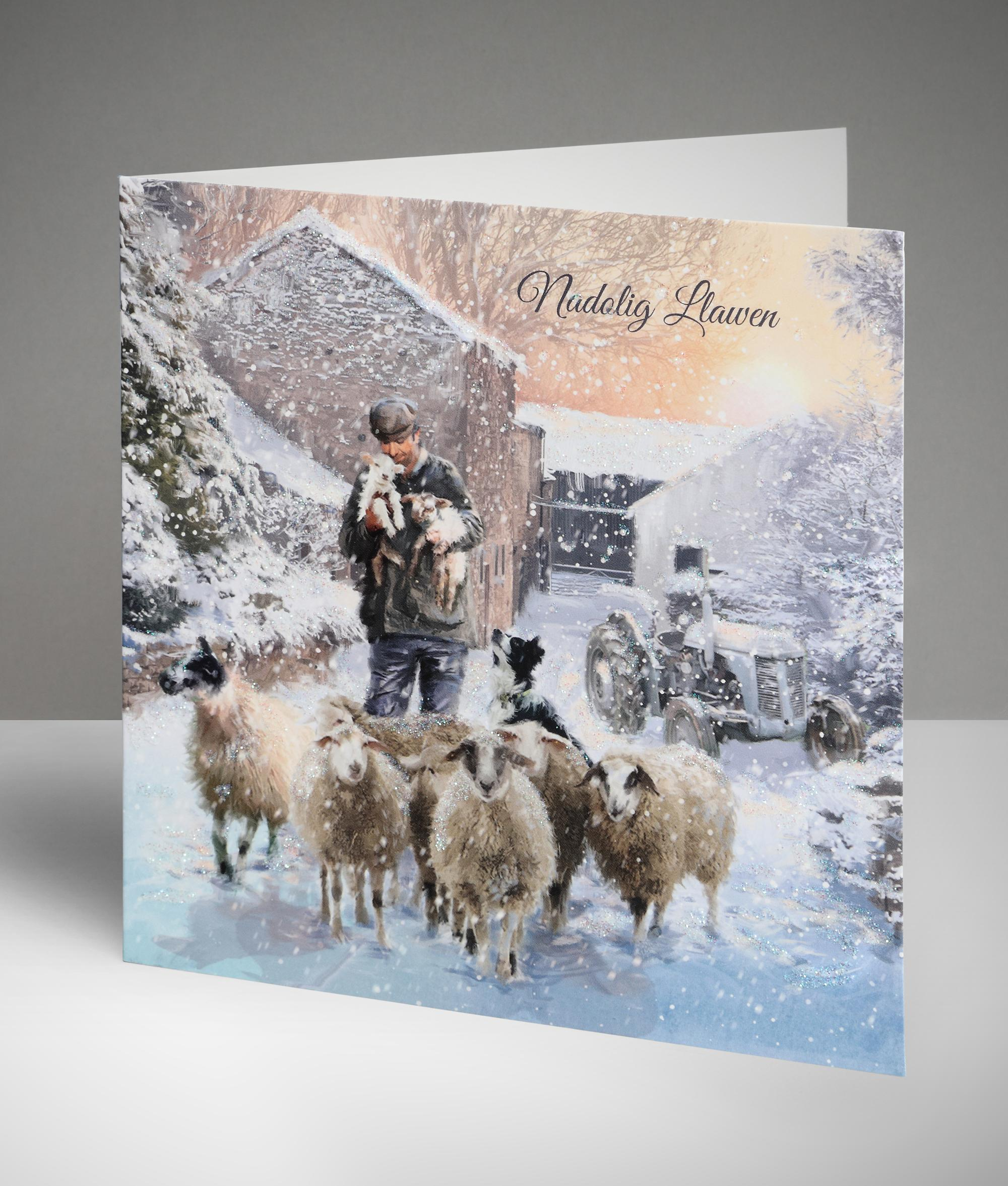 Winter flock welsh christmas cards pack of 10 cancer research winter flock welsh christmas cards pack of 10 kristyandbryce Image collections