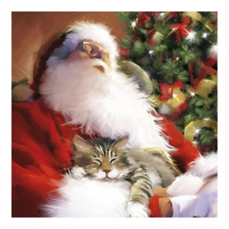 Santa and Tiddles Christmas Cards - Pack of 10