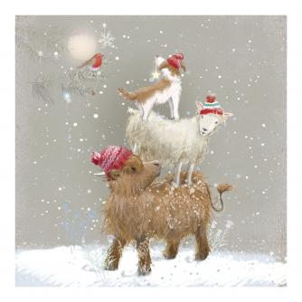 Top Dog Christmas Cards - Pack of 10