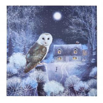 Wise Owl Christmas Cards - Pack of 20